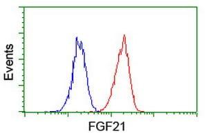 FGF21 Antibody in Flow Cytometry (Flow)
