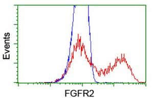 FGFR2 Antibody in Flow Cytometry (Flow)