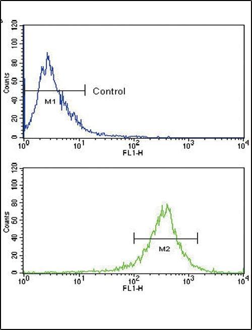 FGFR4 Antibody in Flow Cytometry (Flow)