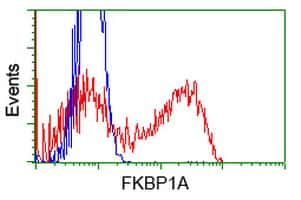 FKBP1A Antibody in Flow Cytometry (Flow)