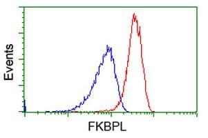 FKBPL Antibody in Flow Cytometry (Flow)