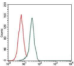 Fibronectin Antibody in Flow Cytometry (Flow)