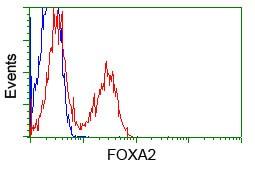 FOXA2 Antibody in Flow Cytometry (Flow)