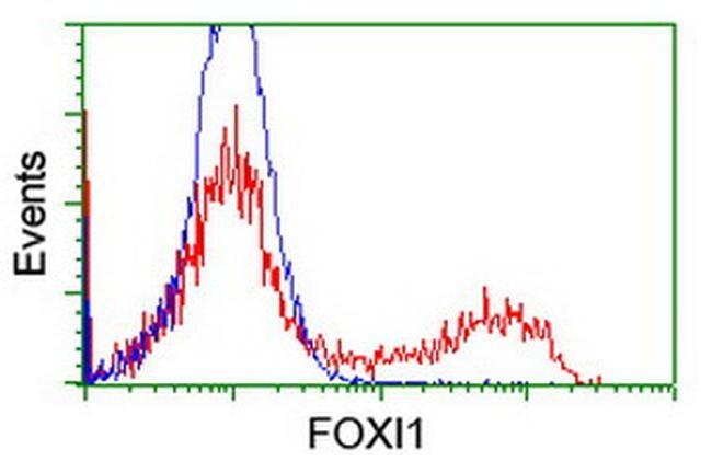 FOXI1 Antibody in Flow Cytometry (Flow)