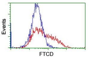 FTCD Antibody in Flow Cytometry (Flow)