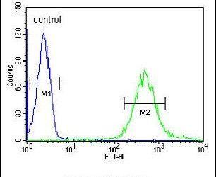 FUT6 Antibody in Flow Cytometry (Flow)