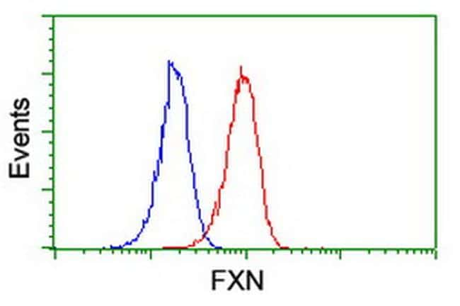 FXN Antibody in Flow Cytometry (Flow)