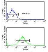 G6PD Antibody in Flow Cytometry (Flow)