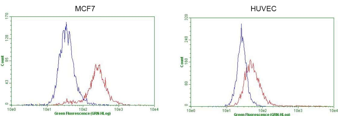 GATA3 Antibody in Flow Cytometry (Flow)