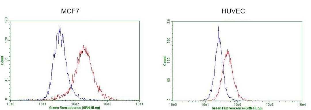 GATA3 Antibody in Flow Cytometry (Flow)