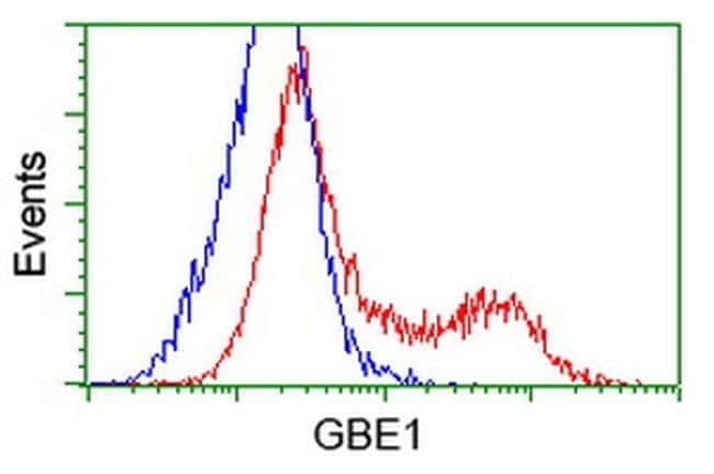 GBE1 Antibody in Flow Cytometry (Flow)