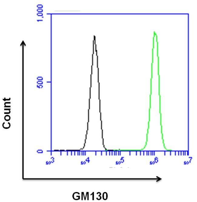 GM130 Antibody in Flow Cytometry (Flow)