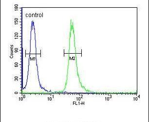 GNAT3 Antibody in Flow Cytometry (Flow)