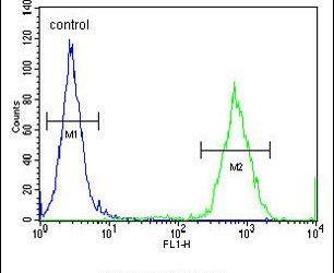 GPD1L Antibody in Flow Cytometry (Flow)