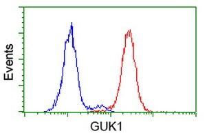 GUK1 Antibody in Flow Cytometry (Flow)
