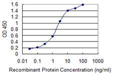 ACVR1 Antibody in ELISA (ELISA)