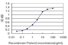 ATOX1 Antibody in ELISA (ELISA)