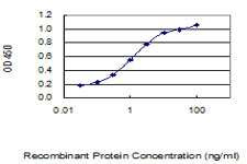 CREM Antibody in ELISA (ELISA)