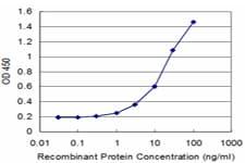 CRY2 Antibody in ELISA (ELISA)