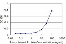 MEOX2 Antibody in ELISA (ELISA)