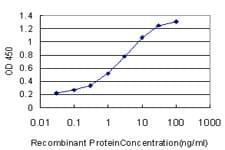 PCNA Antibody in ELISA (ELISA)