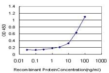 PGGT1B Antibody in ELISA (ELISA)