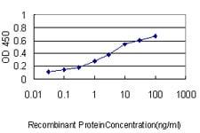 RLBP1 Antibody in ELISA (ELISA)