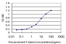 NMI Antibody in ELISA (ELISA)