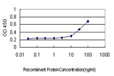 PSCD3 Antibody in ELISA (ELISA)