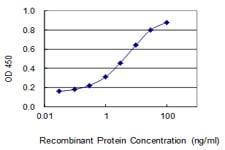KIAA0226 Antibody in ELISA (ELISA)