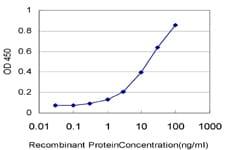 NUP62 Antibody in ELISA (ELISA)