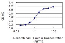 CHRDL1 Antibody in ELISA (ELISA)