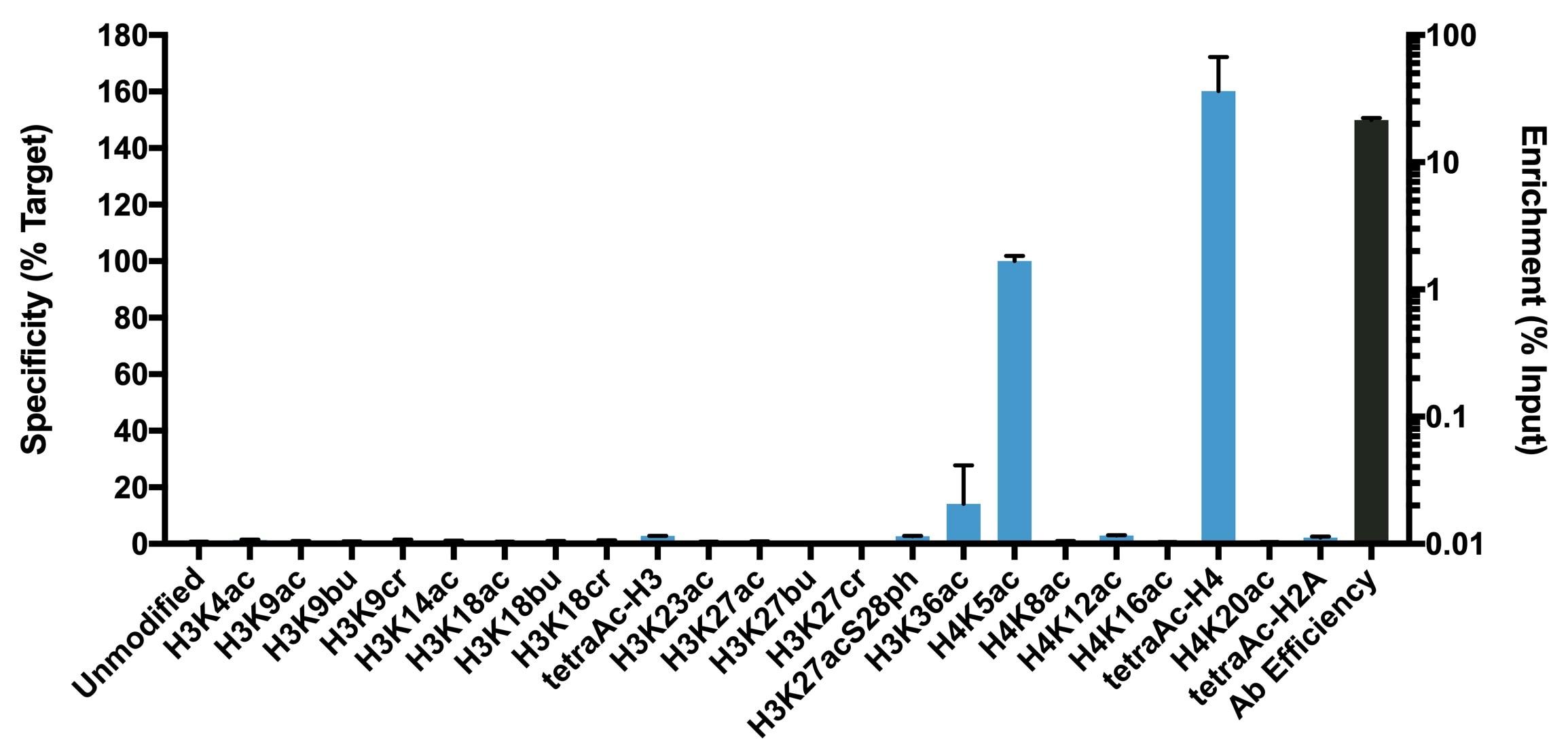 H4K5ac Antibody in ChIP assay (ChIP)