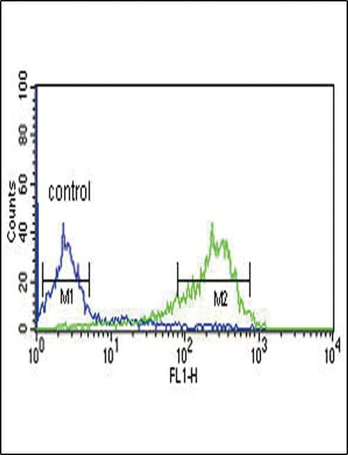 HAPLN1 Antibody in Flow Cytometry (Flow)