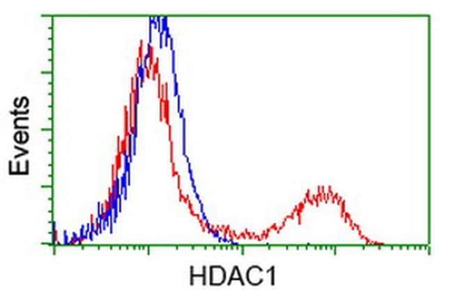 HDAC1 Antibody in Flow Cytometry (Flow)