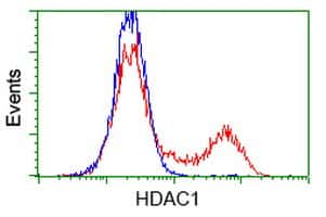 HDAC1 Antibody in Flow Cytometry (Flow)
