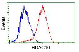 HDAC10 Antibody in Flow Cytometry (Flow)