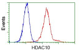 HDAC10 Antibody in Flow Cytometry (Flow)