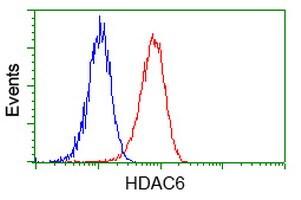 HDAC6 Antibody in Flow Cytometry (Flow)