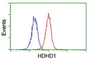 HDHD1 Antibody in Flow Cytometry (Flow)