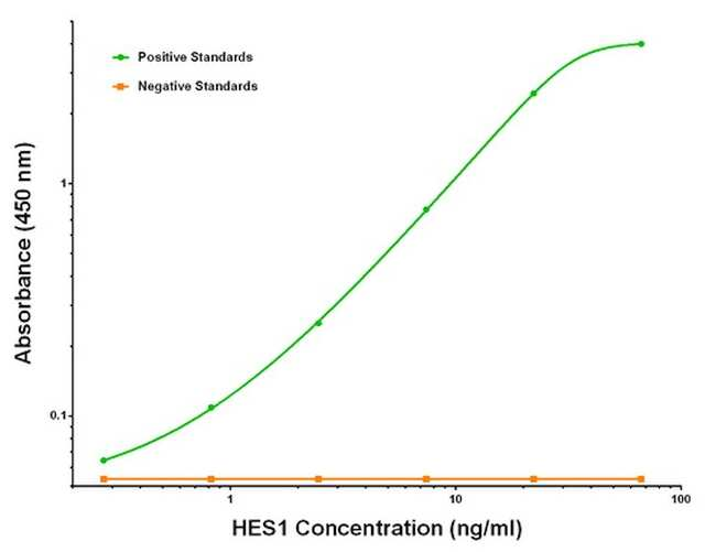 HES1 Antibody in ELISA (ELISA)