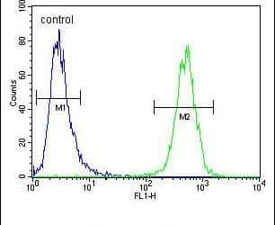 HHLA2 Antibody in Flow Cytometry (Flow)