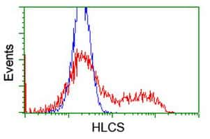 HLCS Antibody in Flow Cytometry (Flow)