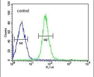 HMGA2 Antibody in Flow Cytometry (Flow)