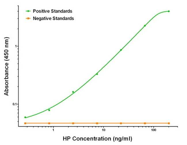 HP Antibody in ELISA (ELISA)