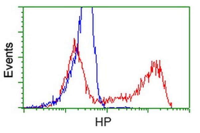 HP Antibody in Flow Cytometry (Flow)