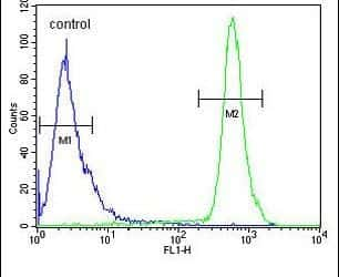 HS3ST2 Antibody in Flow Cytometry (Flow)