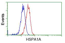 HSPA1A Antibody in Flow Cytometry (Flow)