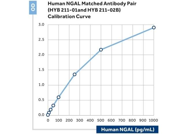 NGAL Antibody in ELISA (ELISA)