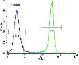 IDH1 Antibody in Flow Cytometry (Flow)